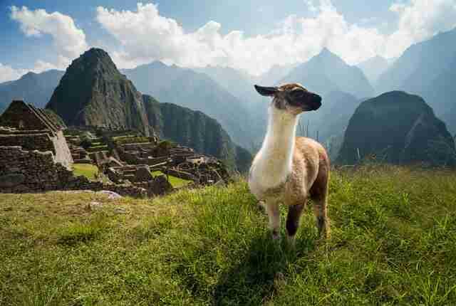 Bewusst reisen nach: Rundreise Peru